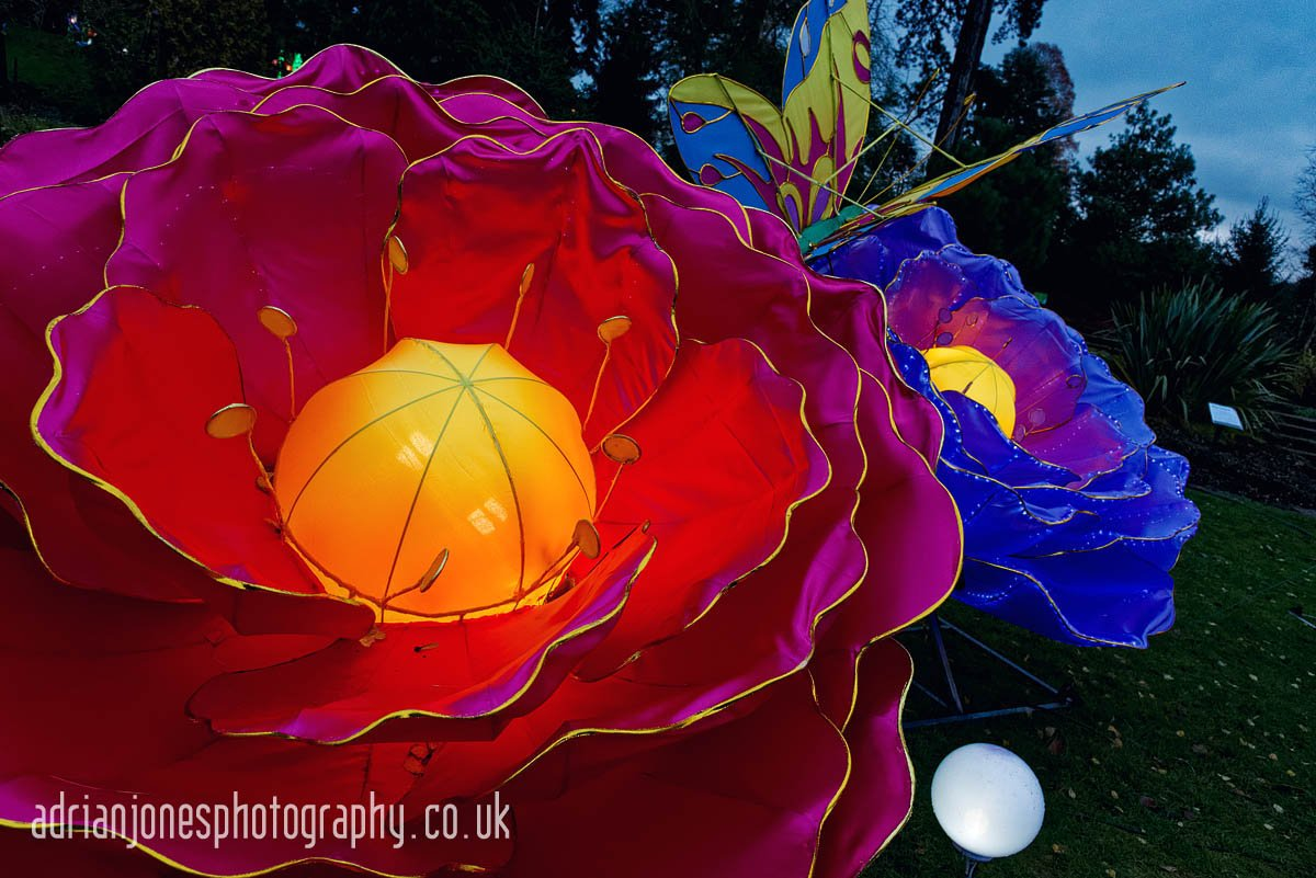 magicallanternbirmingham-16