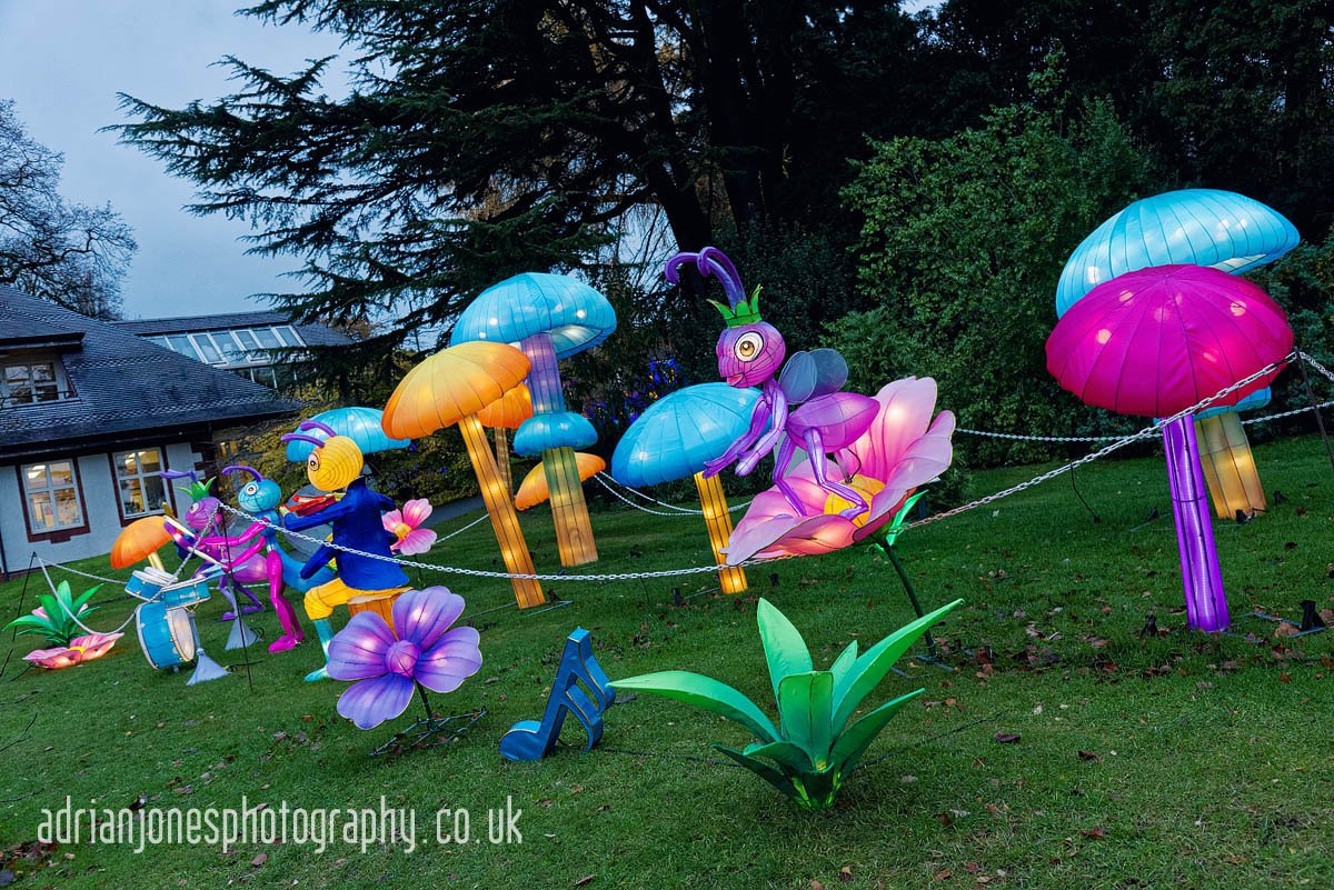 magicallanternbirmingham-17