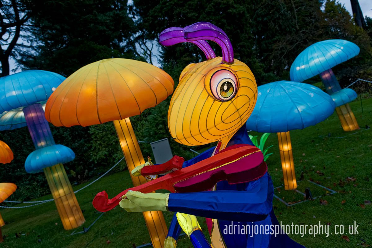magicallanternbirmingham-19