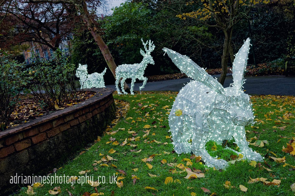 magicallanternbirmingham-23
