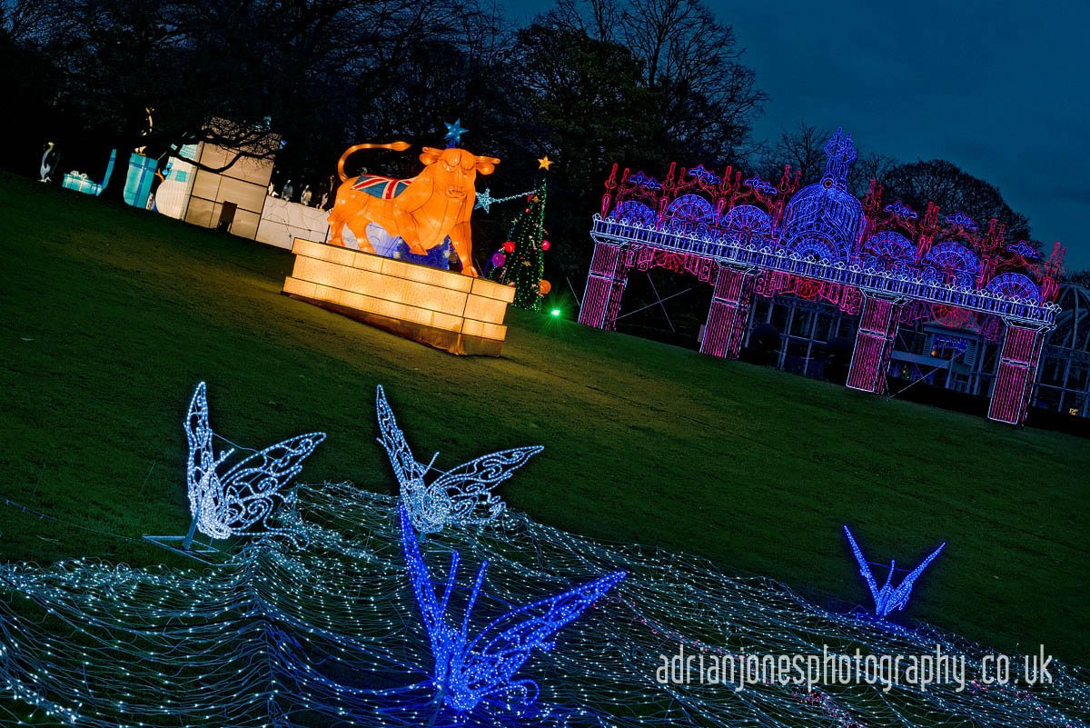 magicallanternbirmingham-37