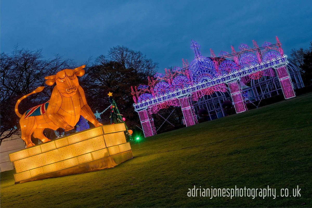 Image of Bullring Bull at Magical Lantern Festival
